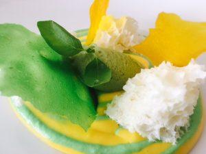 Crémeux Avocat & Mangue, Biscuit léger au yaourt Sorbet Avocat