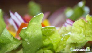 Piccola insalata estiva
