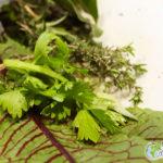 Lutte contre le gaspillage alimentaire : Enjeux, Urgences, Actions.